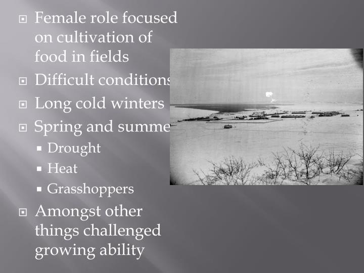 Female role focused on cultivation of food in fields