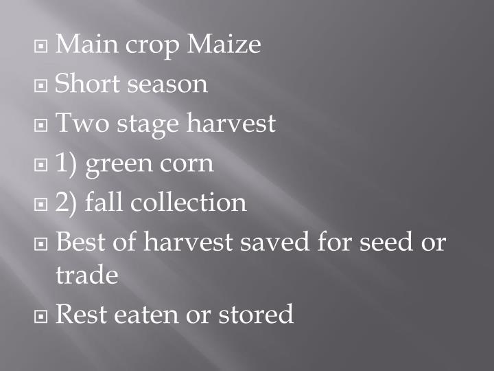 Main crop Maize