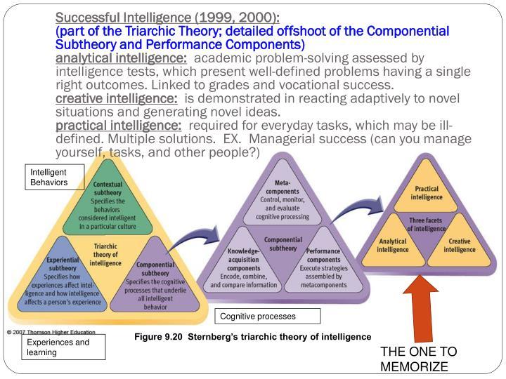 Successful Intelligence (1999, 2000