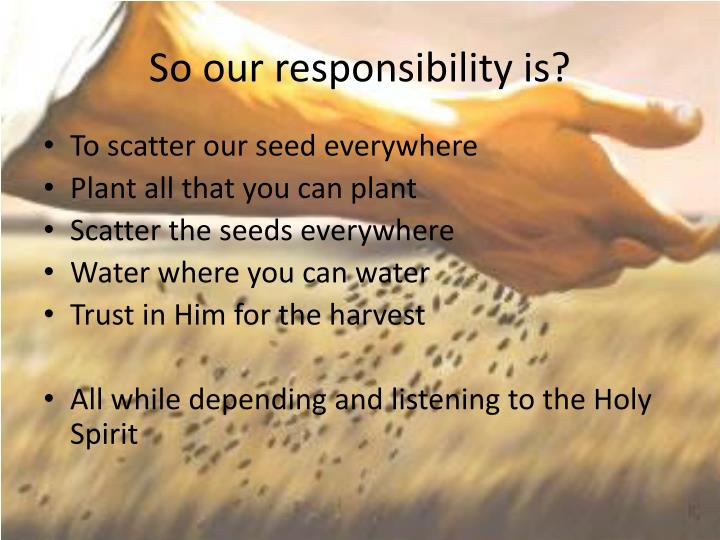 So our responsibility is?