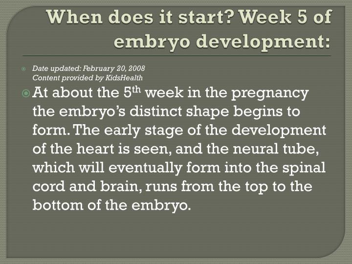 When does it start? Week 5 of embryo development: