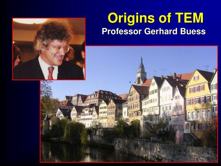 Origins of TEM