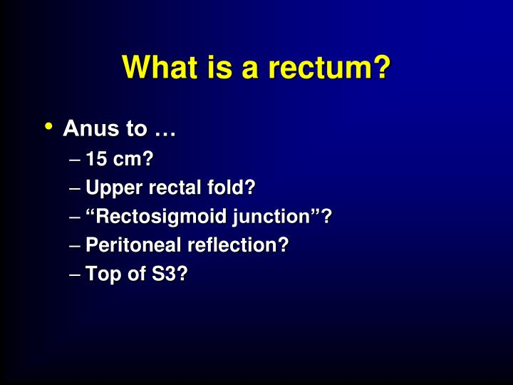 What is a rectum?