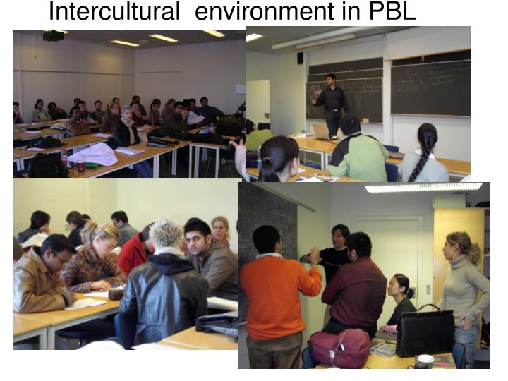 Intercultural  environment in PBL