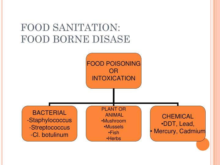 FOOD SANITATION: