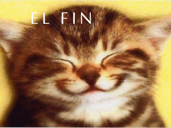 E L   F I N