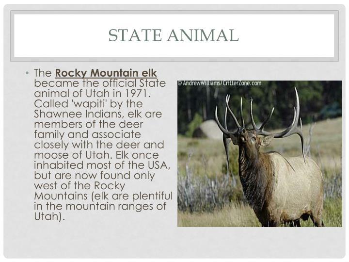 State animal
