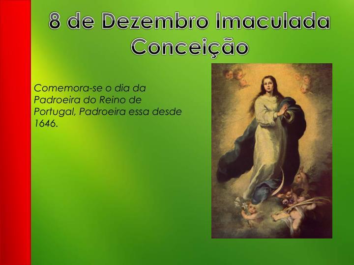 8 de Dezembro Imaculada Conceição