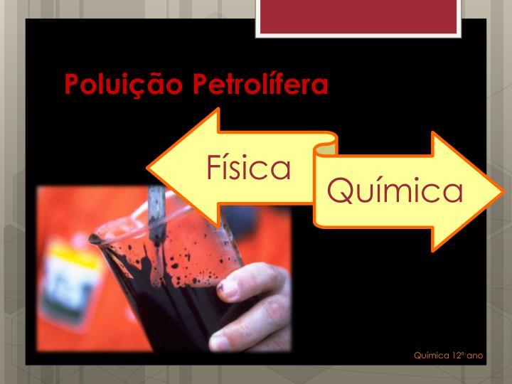 Poluição Petrolífera