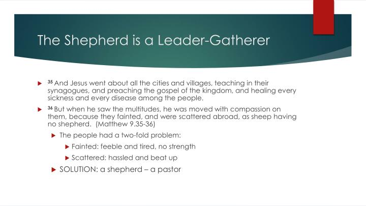 The shepherd is a leader gatherer
