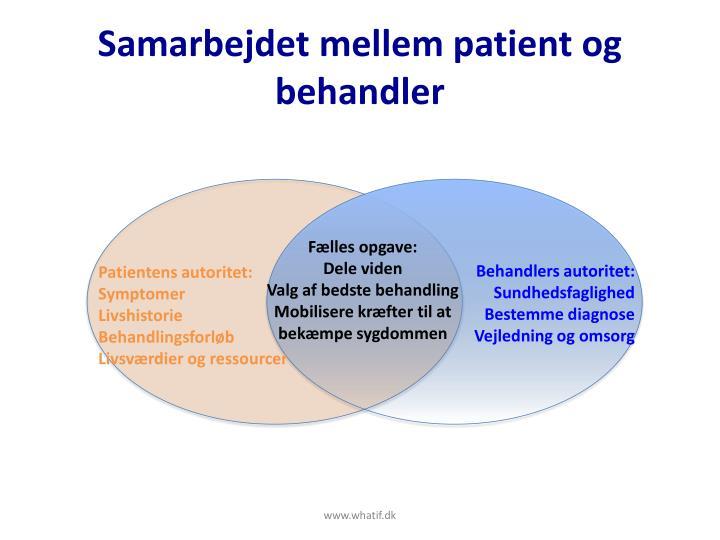 Samarbejdet mellem patient og behandler