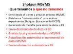 shotgun ms ms que tenemos y que no tenemos