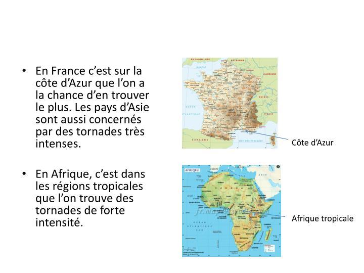 En France cest sur la cte dAzur que lon a la chance den trouver le