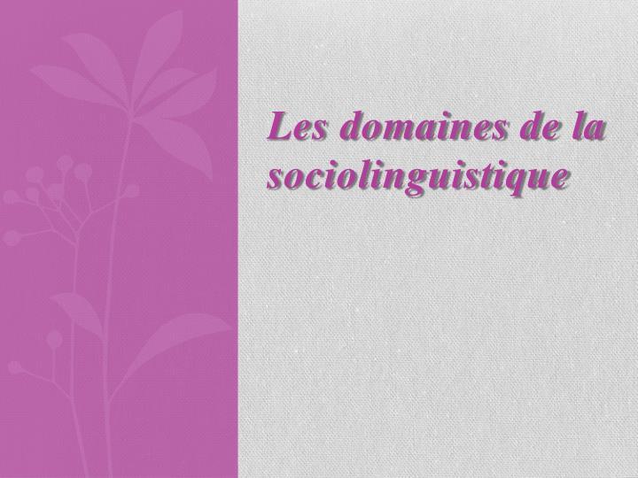 Les domaines de la sociolinguistique