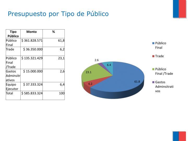 Presupuesto por Tipo de Público