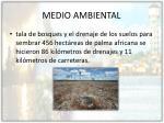 medio ambiental