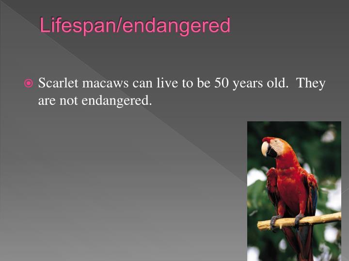 Lifespan/endangered
