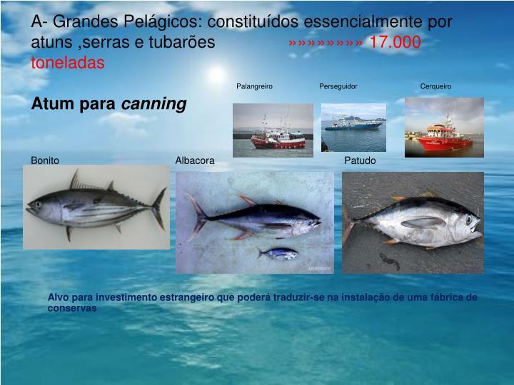 A- Grandes Pelágicos: constituídos essencialmente por atuns ,serras e tubarões
