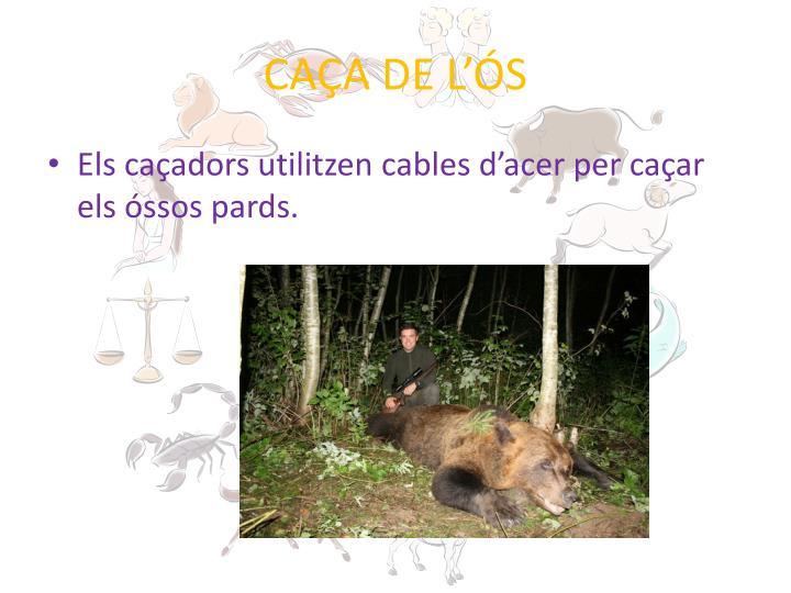 CAÇA DE L'ÓS