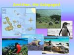 and then the galapagos