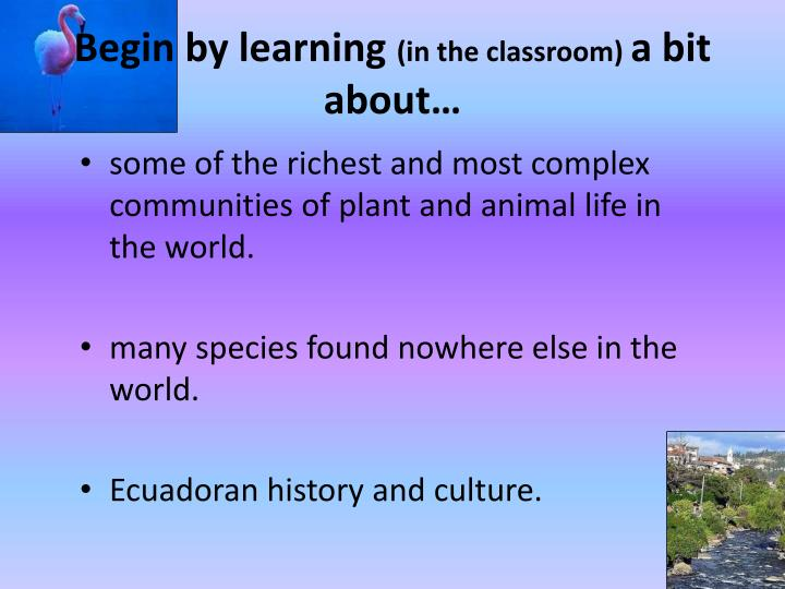 Begin by learning in the classroom a bit about
