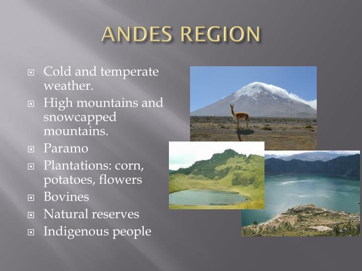 ANDES REGION