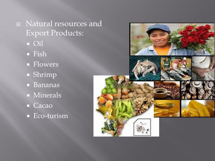 Natural resources and Export Products: