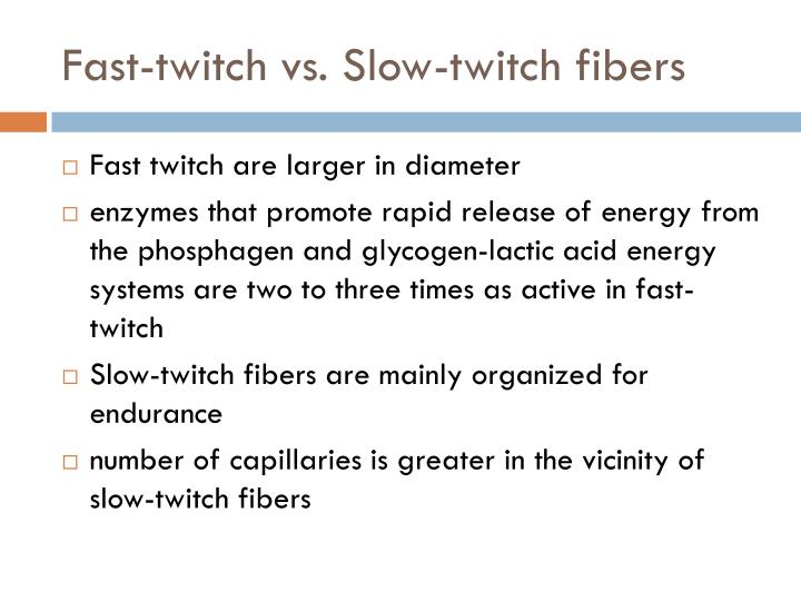 Fast-twitch vs. Slow-twitch