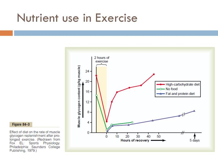 Nutrient use in Exercise