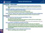 parton particle jets