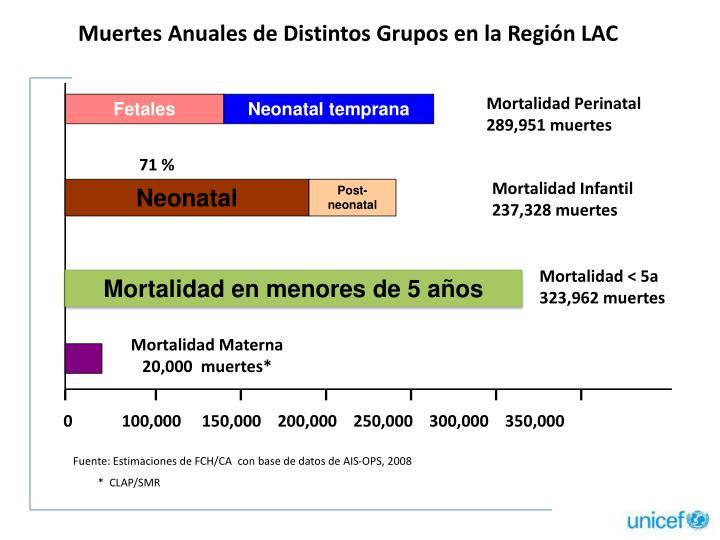 Muertes Anuales de Distintos Grupos en la Región LAC