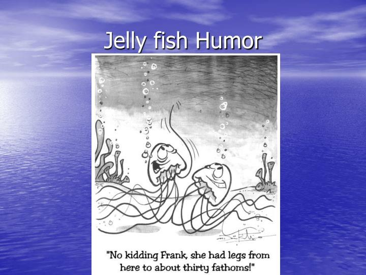 Jelly fish Humor