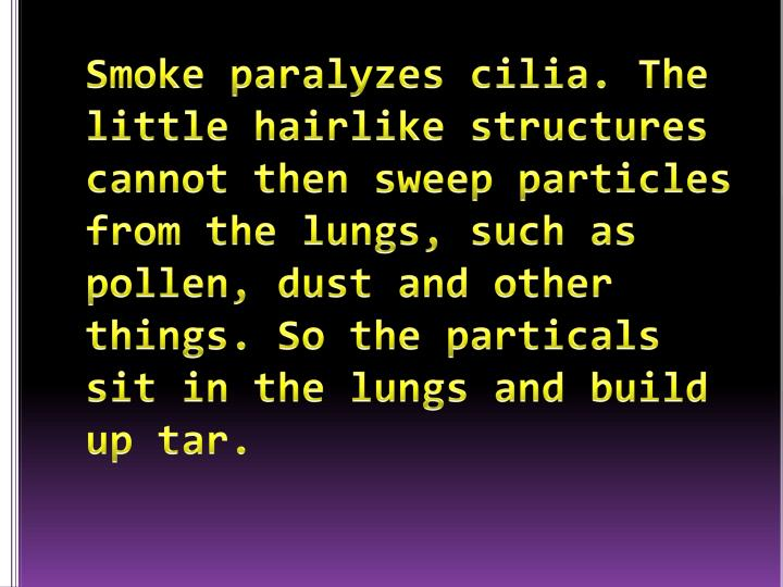 Smoke paralyzes cilia. The little