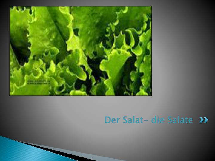 Der Salat- die Salate