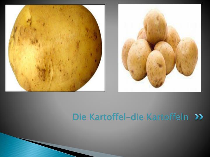 Die Kartoffel-die Kartoffeln