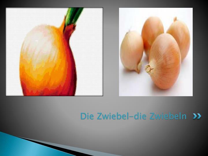 Die Zwiebel-die Zwiebeln