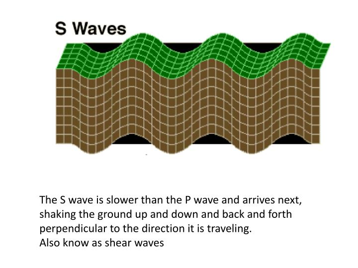 The S wave is slower than the P wave and arrives next, shaking the ground up and down and back and forth perpendicular to the direction it is traveling.