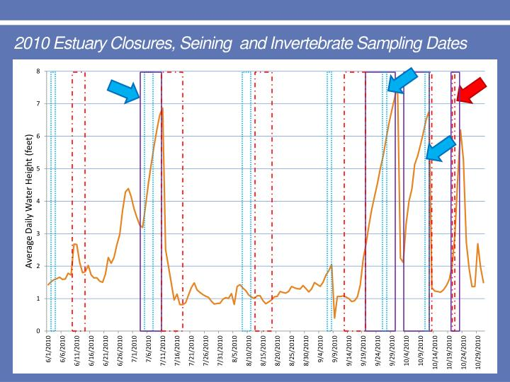 2010 Estuary Closures, Seining  and Invertebrate Sampling Dates