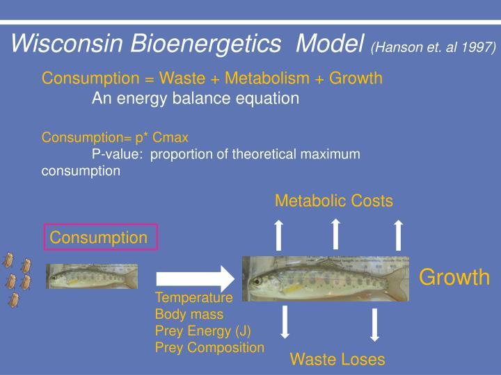 Wisconsin Bioenergetics  Model