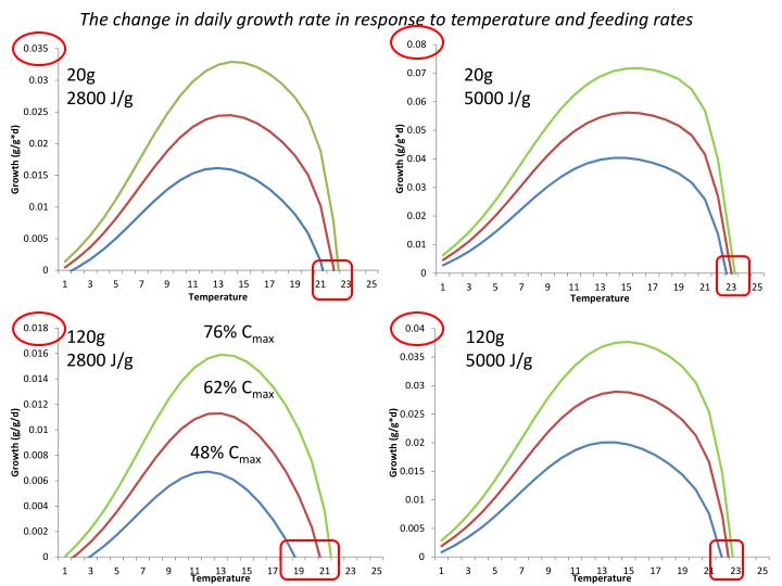 The change in daily growth rate in response to temperature and feeding rates