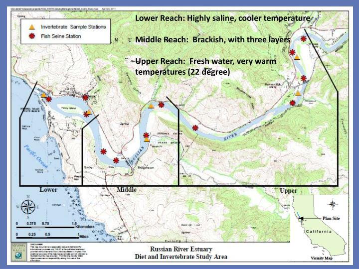 Lower Reach: Highly saline, cooler temperature