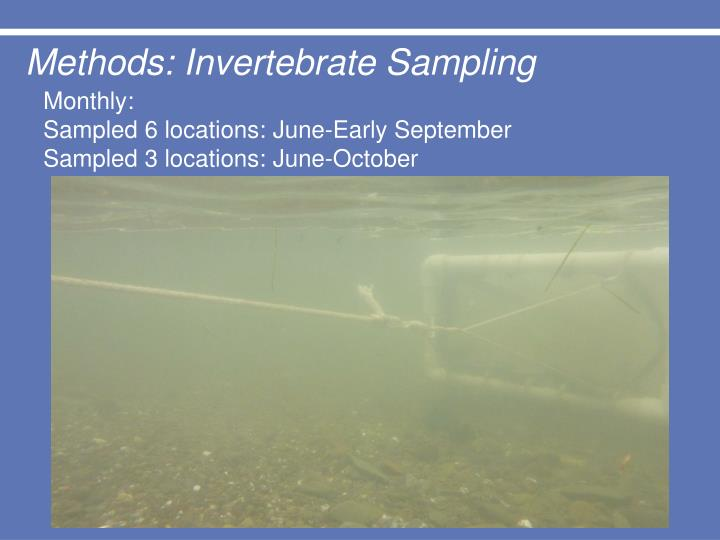Methods: Invertebrate Sampling