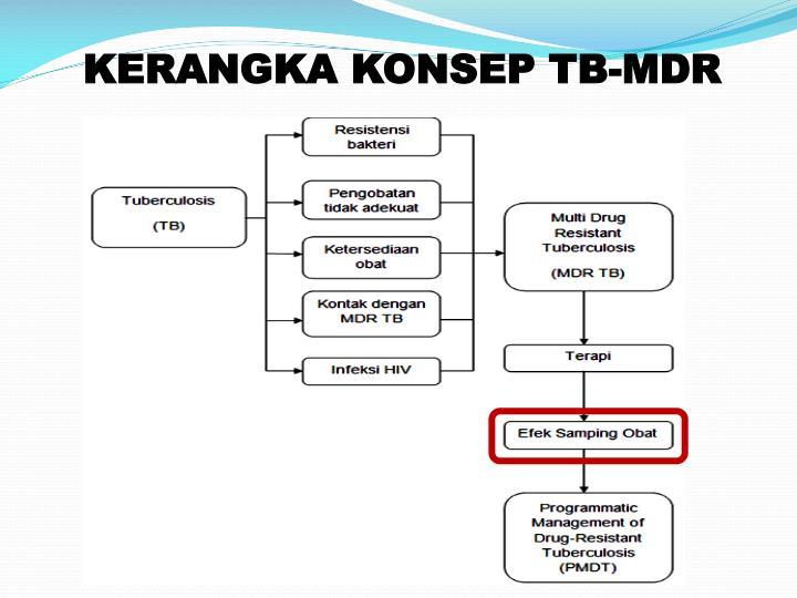 KERANGKA KONSEP TB-MDR