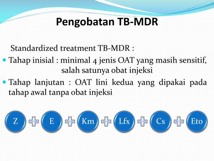 Pengobatan TB-MDR