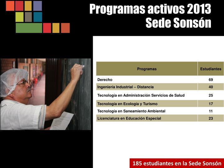 Programas activos 2013
