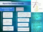 apocrine sweat glands