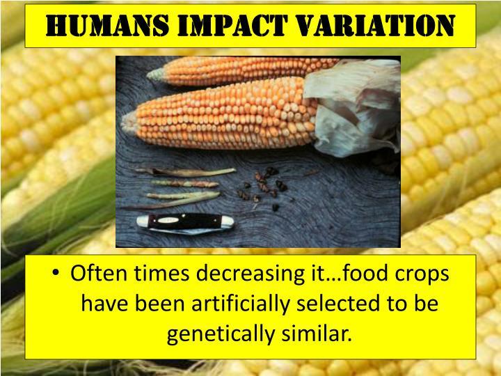 Humans Impact Variation