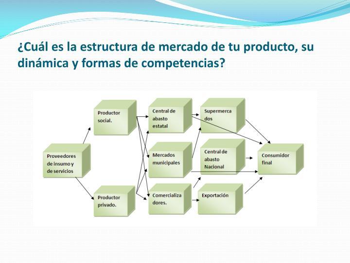 ¿Cuál es la estructura de mercado de tu producto, su dinámica y formas de competencias?