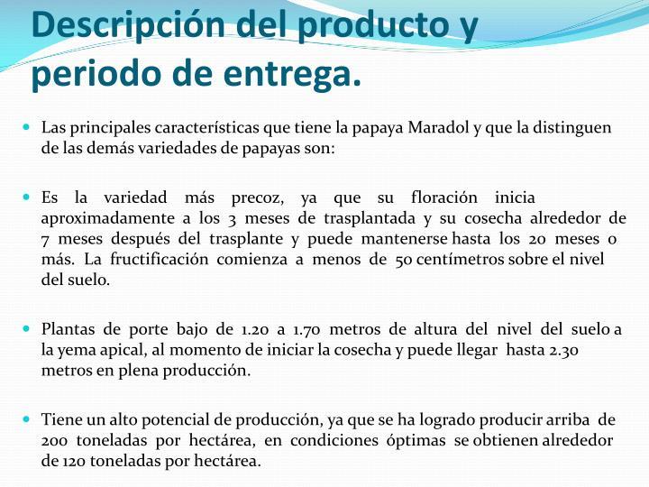 Descripción del producto y periodo de entrega