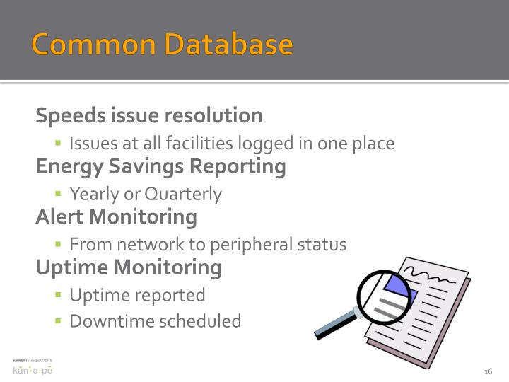 Common Database